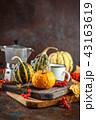 かぼちゃ カボチャ 南瓜の写真 43163619
