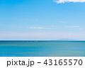 海 快晴 晴れの写真 43165570