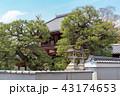 本法寺 寺社仏閣 史跡の写真 43174653