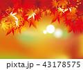 紅葉 もみじ 秋のイラスト 43178575