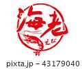 海老 えび 筆文字 43179040