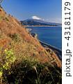 富士山 薩埵峠 海の写真 43181179