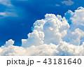夏の青空 43181640