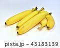 バナナ 43183139