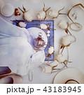 帽子 ハット スカーフのイラスト 43183945