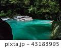 仁淀ブルー 43183995