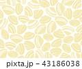 貝 水彩画 43186038