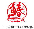 鰆 筆文字 魚のイラスト 43186040