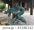 水 自然 日本の写真 43186142