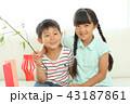 七夕飾りを作る女の子と男の子 43187861