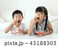 かき氷を食べる男の子と女の子 43188303