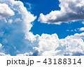 夏の青空 43188314