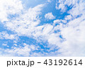 空 快晴 晴天の写真 43192614
