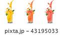 オレンジ オレンジ色 ジュースのイラスト 43195033