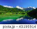 夏の上高地、大正池のリフレクション  43195914