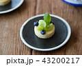 タルト マスカット ケーキの写真 43200217