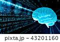 デジタル バイナリコード サイバーのイラスト 43201160