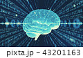 デジタル バイナリコード サイバーのイラスト 43201163