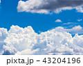 夏の青空 43204196