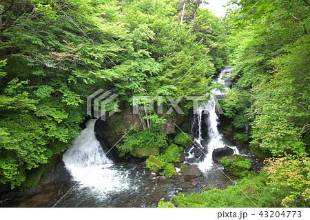 の 滝 アクセス 竜頭 竜頭の滝