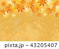紅葉 モミジ 背景のイラスト 43205407
