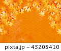 紅葉 モミジ 背景のイラスト 43205410