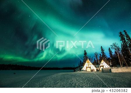 《カナダ ノースウエスト準州》 イエローナイフのオーロラとティッピー 43206382
