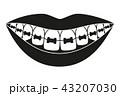 口 歯 オーラルのイラスト 43207030