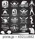 バット ベースボール 白球のイラスト 43211882
