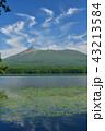 大沼公園 山 駒ヶ岳の写真 43213584