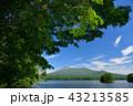 大沼公園 山 駒ヶ岳の写真 43213585