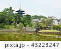 奈良 興福寺 猿沢池の写真 43223247