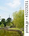 奈良 興福寺 猿沢池の写真 43223251
