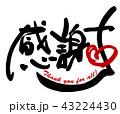 感謝 筆文字 Thankのイラスト 43224430