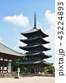 興福寺 五重塔 世界遺産の写真 43224893