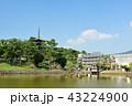 興福寺 五重塔 世界遺産の写真 43224900