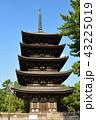 奈良 興福寺 五重塔の写真 43225019