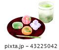 練り切り 緑茶 和菓子のイラスト 43225042