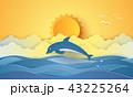 いるか イルカ 海豚のイラスト 43225264