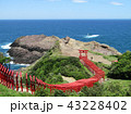 元乃隅稲成神社 / 山口県 (日本) 千本鳥居 43228402