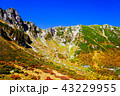10月の千畳敷カール、紅葉と青空 43229955