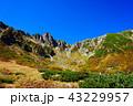 10月の千畳敷カール、紅葉と青空 43229957