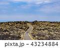 風景 三原山 景色の写真 43234884