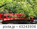 日本庭園の太鼓橋 43243936