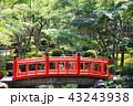 日本庭園の太鼓橋 43243938