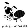 アリのイラスト 43244501