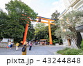 川越氷川神社 43244848