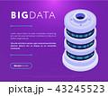 ビッグデータ ウェブページ データベースのイラスト 43245523