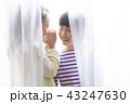 女の子 カーテン 隠れるの写真 43247630