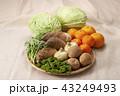 春野菜の集合 43249493
